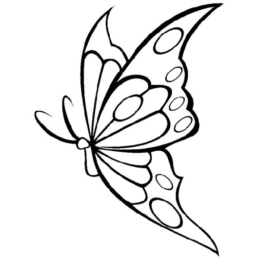 Butterfily Coloring Pages